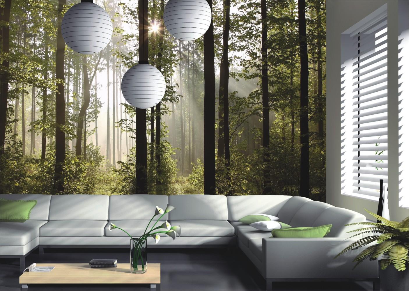 Fototapete-Tapete-Natur-Wald-Baeume-Lichtspiel-Foto-360-cm-x-254-cm