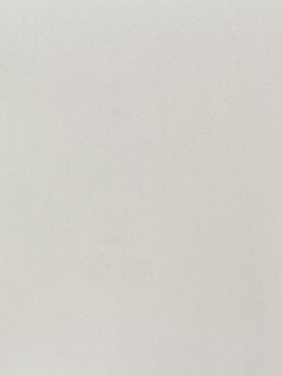tapete rasch uni silber glitzer cosy white 269351. Black Bedroom Furniture Sets. Home Design Ideas