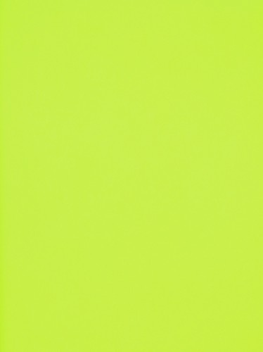 Rasch Textil non-woven wallpaper Giggle kids wallpaper 137015 Plain lightgreen