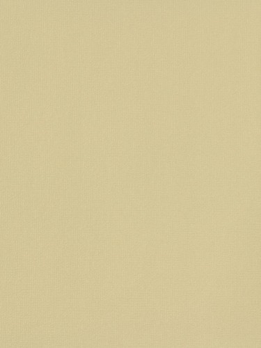 Rasch non-woven wallpaper Fresh Up plain beige 496413 online kaufen