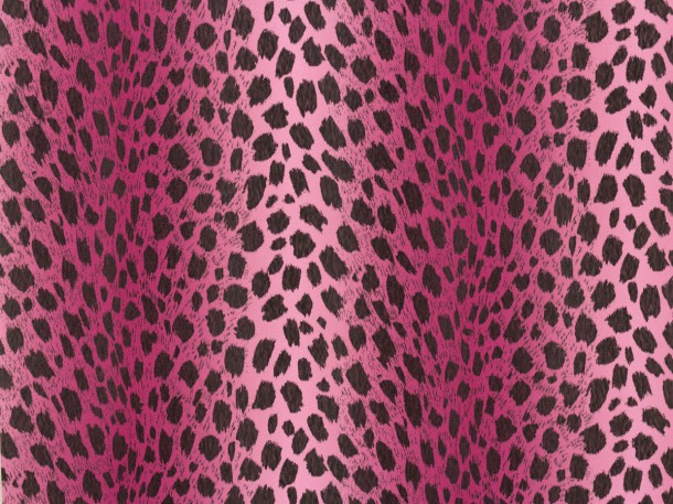 Wallpaper Chicago A.S Création wallpaper 93530-3 935303 leo print pink black  online kaufen