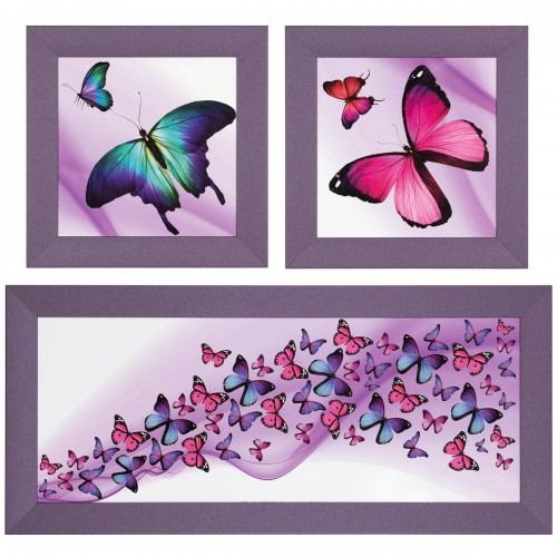 Set of 3 pictures framed art print in different sizes Butterflies rose purple turqouise online kaufen