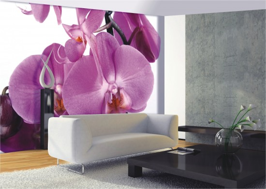 fototapete tapete gro e orchidee blume bl te foto 360 cm x. Black Bedroom Furniture Sets. Home Design Ideas