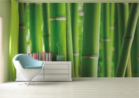 fototapete tapete bambus bamboo exotik foto 360 cm x 254 cm. Black Bedroom Furniture Sets. Home Design Ideas